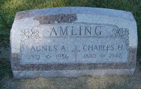AMLING, AGNES A. - Delaware County, Iowa | AGNES A. AMLING