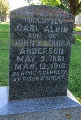 ANDERSON, CARL ALBIN - Delaware County, Iowa | CARL ALBIN ANDERSON