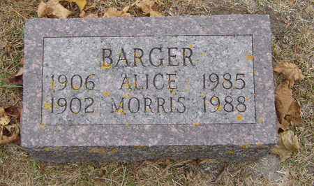 SCHNEIDER BARGER, ALICE - Delaware County, Iowa | ALICE SCHNEIDER BARGER