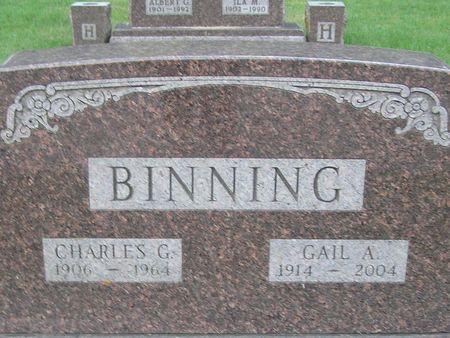 BINNING, GAIL A. - Delaware County, Iowa   GAIL A. BINNING