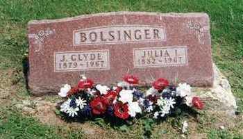LANDIS BOLSINGER, JULIA - Delaware County, Iowa | JULIA LANDIS BOLSINGER
