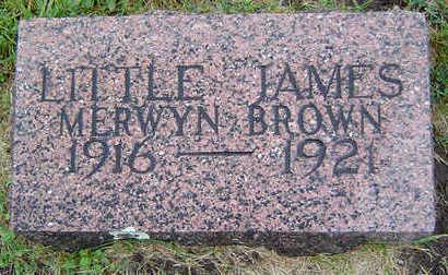 BROWN, JAMES MERWYN - Delaware County, Iowa   JAMES MERWYN BROWN