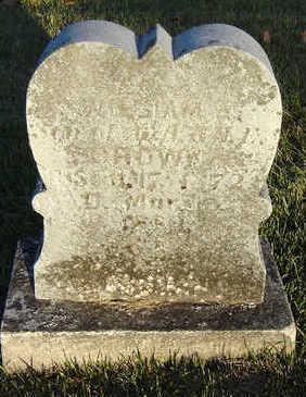 BROWN, WILLIAM A. - Delaware County, Iowa | WILLIAM A. BROWN