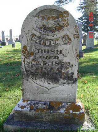 BUSH, SELDEN F. - Delaware County, Iowa | SELDEN F. BUSH