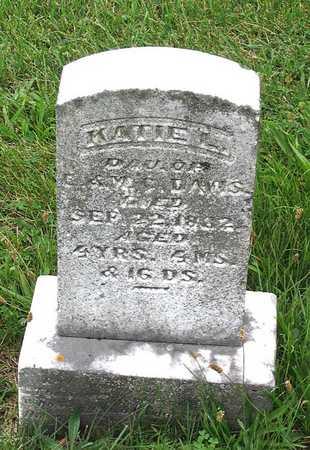 DAVIS, KATIE L. - Delaware County, Iowa   KATIE L. DAVIS