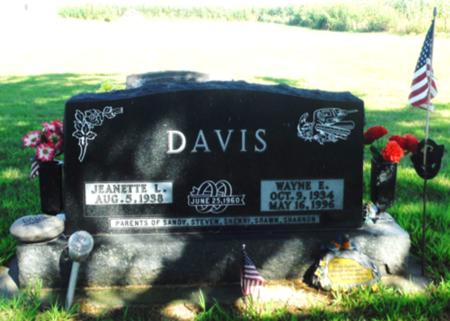 DAVIS, WAYNE E. - Delaware County, Iowa | WAYNE E. DAVIS