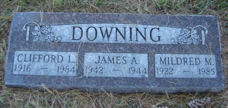 DOWNING, MILDRED M. - Delaware County, Iowa | MILDRED M. DOWNING
