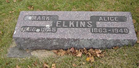 JONES ELKINS, ALICE - Delaware County, Iowa   ALICE JONES ELKINS
