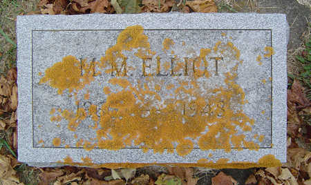 STEELE ELLIOT, MARILLA M. - Delaware County, Iowa | MARILLA M. STEELE ELLIOT