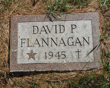 FLANNAGAN, DAVID P. - Delaware County, Iowa | DAVID P. FLANNAGAN