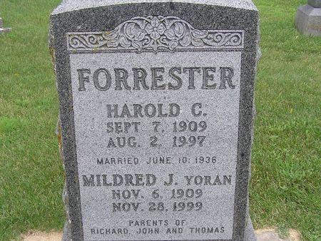FORRESTER, HAROLD C. - Delaware County, Iowa | HAROLD C. FORRESTER