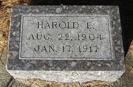 GIBBS, HAROLD E. - Delaware County, Iowa | HAROLD E. GIBBS