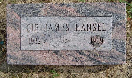 HANSEL, CIE JAMES - Delaware County, Iowa | CIE JAMES HANSEL