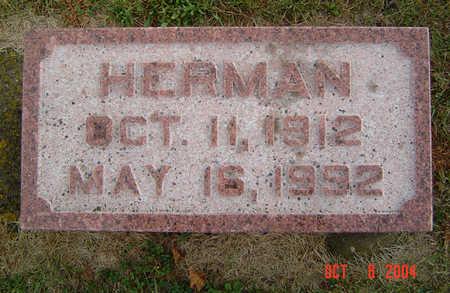 LEWIS, HERMAN - Delaware County, Iowa   HERMAN LEWIS