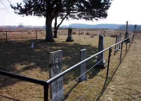 LIVINGSTON, CEMETERY - Delaware County, Iowa | CEMETERY LIVINGSTON
