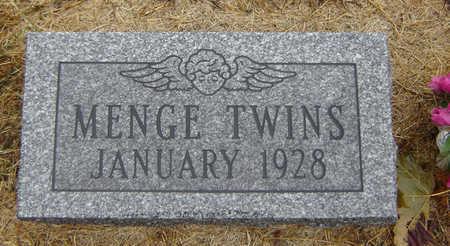 MENGE, INFANT TWINS - Delaware County, Iowa | INFANT TWINS MENGE