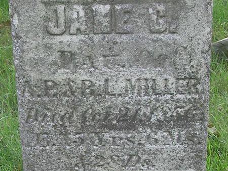 MILLER, JANE - Delaware County, Iowa | JANE MILLER