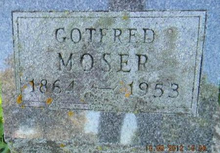 MOSER, GOTFRED - Delaware County, Iowa | GOTFRED MOSER