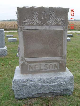 NELSON, FAMILY STONE - Delaware County, Iowa | FAMILY STONE NELSON