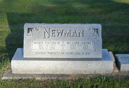 NEWMAN, MILLARD JEROME - Delaware County, Iowa | MILLARD JEROME NEWMAN