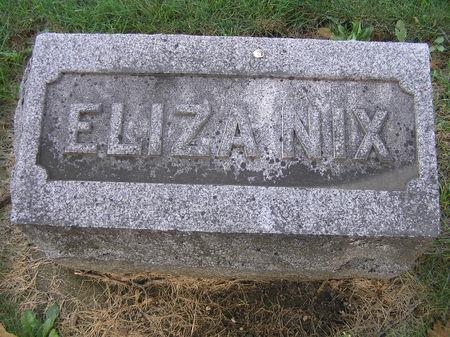 NIX, ELIZA - Delaware County, Iowa | ELIZA NIX