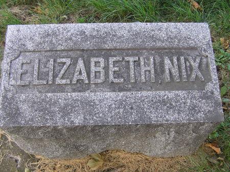 NIX, ELIZABETH - Delaware County, Iowa | ELIZABETH NIX