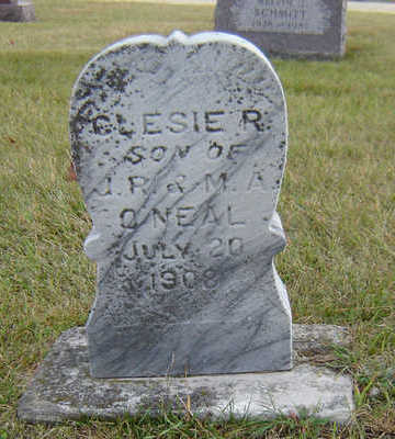 O'NEAL, CLESIE R. - Delaware County, Iowa | CLESIE R. O'NEAL