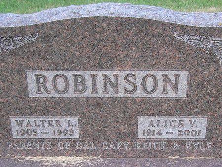 ROBINSON, ALICE V. - Delaware County, Iowa   ALICE V. ROBINSON