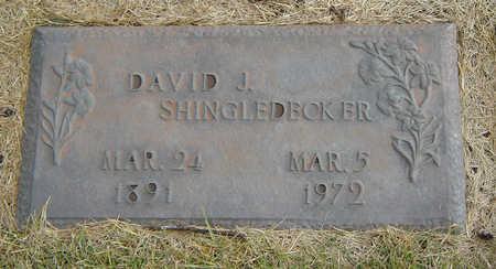 SHINGLEDECKER, DAVID J. - Delaware County, Iowa   DAVID J. SHINGLEDECKER