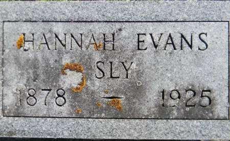 SLY, HANNAH - Delaware County, Iowa | HANNAH SLY