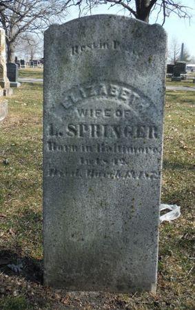 SPRINGER, ELIZABETH - Delaware County, Iowa | ELIZABETH SPRINGER