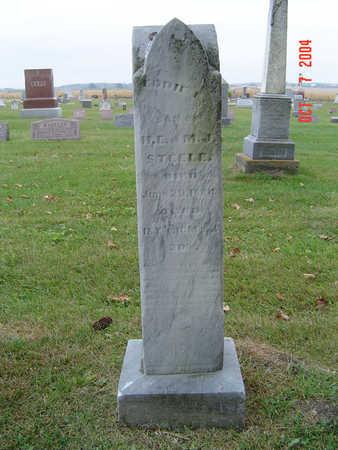 STEELE, EDDIE E. - Delaware County, Iowa | EDDIE E. STEELE