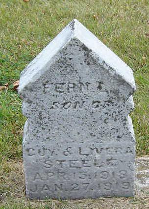 STEELE, FERN L. - Delaware County, Iowa | FERN L. STEELE