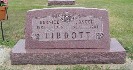 HANKINS TIBBBOTT, BERNICE - Delaware County, Iowa | BERNICE HANKINS TIBBBOTT