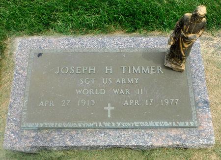 TIMMER, JOSEPH HENRY - Delaware County, Iowa | JOSEPH HENRY TIMMER