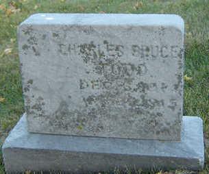 TODD, CHARLES BRUCE - Delaware County, Iowa   CHARLES BRUCE TODD