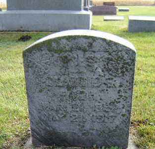 TOOMER, CLAUDIE W. - Delaware County, Iowa | CLAUDIE W. TOOMER