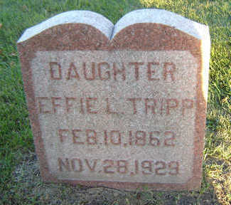 TRIPP, EFFIE L. - Delaware County, Iowa | EFFIE L. TRIPP