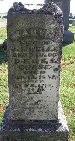 WELLS, MARY J. - Delaware County, Iowa | MARY J. WELLS