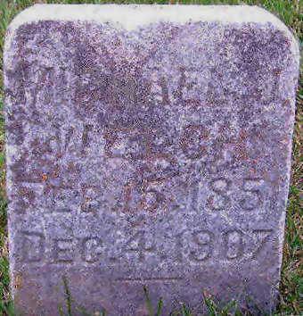 WELSH, MICHAEL J. - Delaware County, Iowa   MICHAEL J. WELSH
