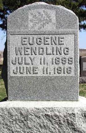 WENDLING, EUGENE W. - Delaware County, Iowa | EUGENE W. WENDLING