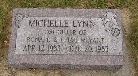 WEYANT, MICHELLE LYNN - Delaware County, Iowa   MICHELLE LYNN WEYANT