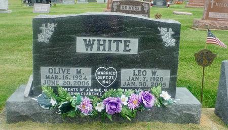 WHITE, LEO W. 'BUD' - Delaware County, Iowa | LEO W. 'BUD' WHITE