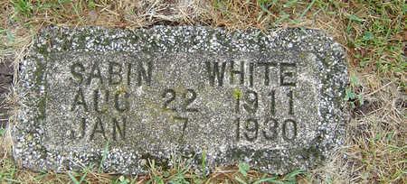 WHITE, SABIN - Delaware County, Iowa | SABIN WHITE