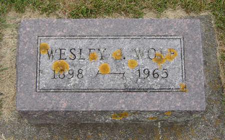 WOLF, WESLEY J. - Delaware County, Iowa | WESLEY J. WOLF