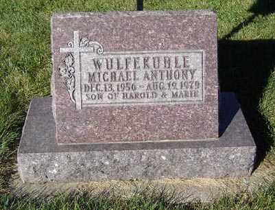 WULFEKUHLE, MICHAEL ANTHONY - Delaware County, Iowa   MICHAEL ANTHONY WULFEKUHLE