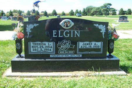 ELGIN, JAMES A. - Delaware County, Iowa | JAMES A. ELGIN