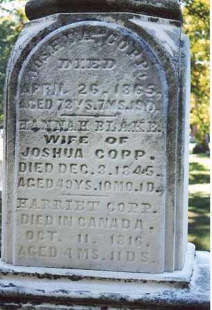COPP, JOSHUA - Des Moines County, Iowa | JOSHUA COPP