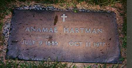 HARTMAN, ANAMAE - Des Moines County, Iowa | ANAMAE HARTMAN