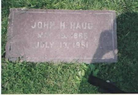 HAUG, JOHN H. - Des Moines County, Iowa | JOHN H. HAUG